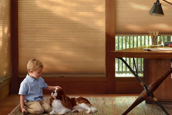 cellular honeycomb shades duette hunter douglas 03